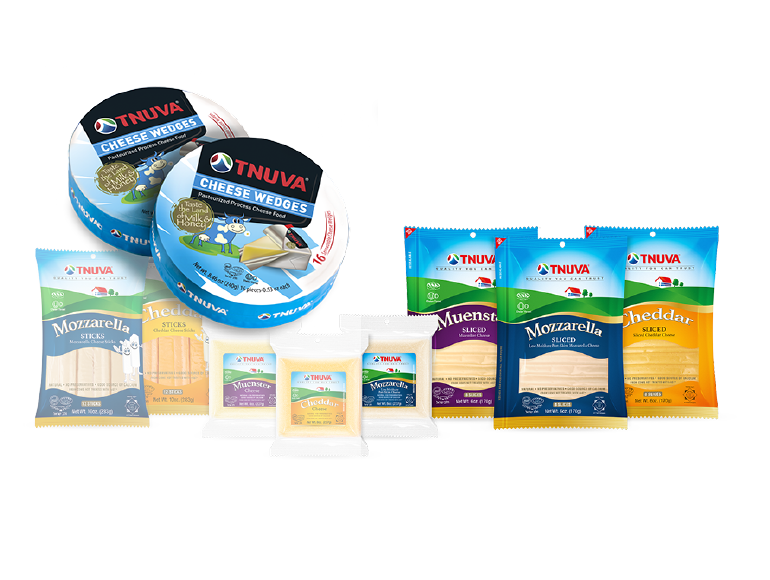 A Hi-Tech cheese production plant in Israel supported with our know-how